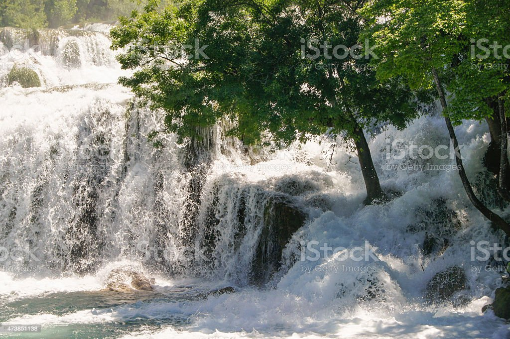 water on the rocks and a tree stock photo
