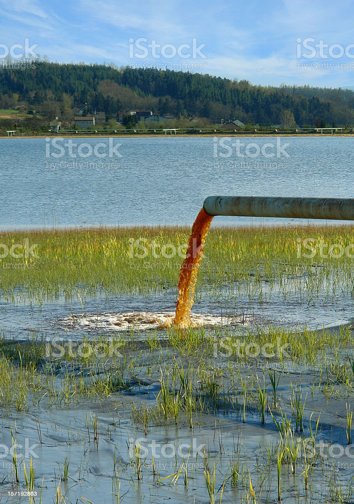 Water Pollution royalty-free stock photo