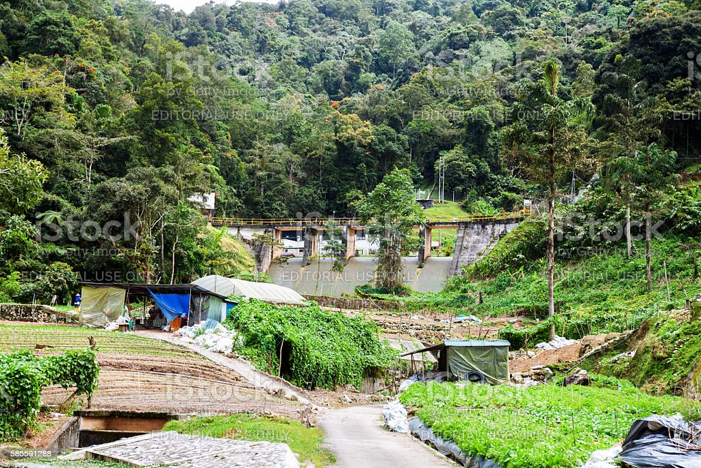 Water power dam in Cameron Highlands stock photo