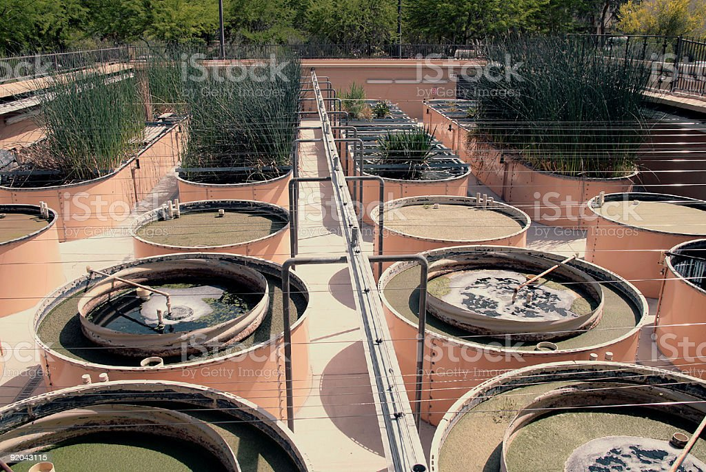 Water Reclaimation And Hydroponics stock photo