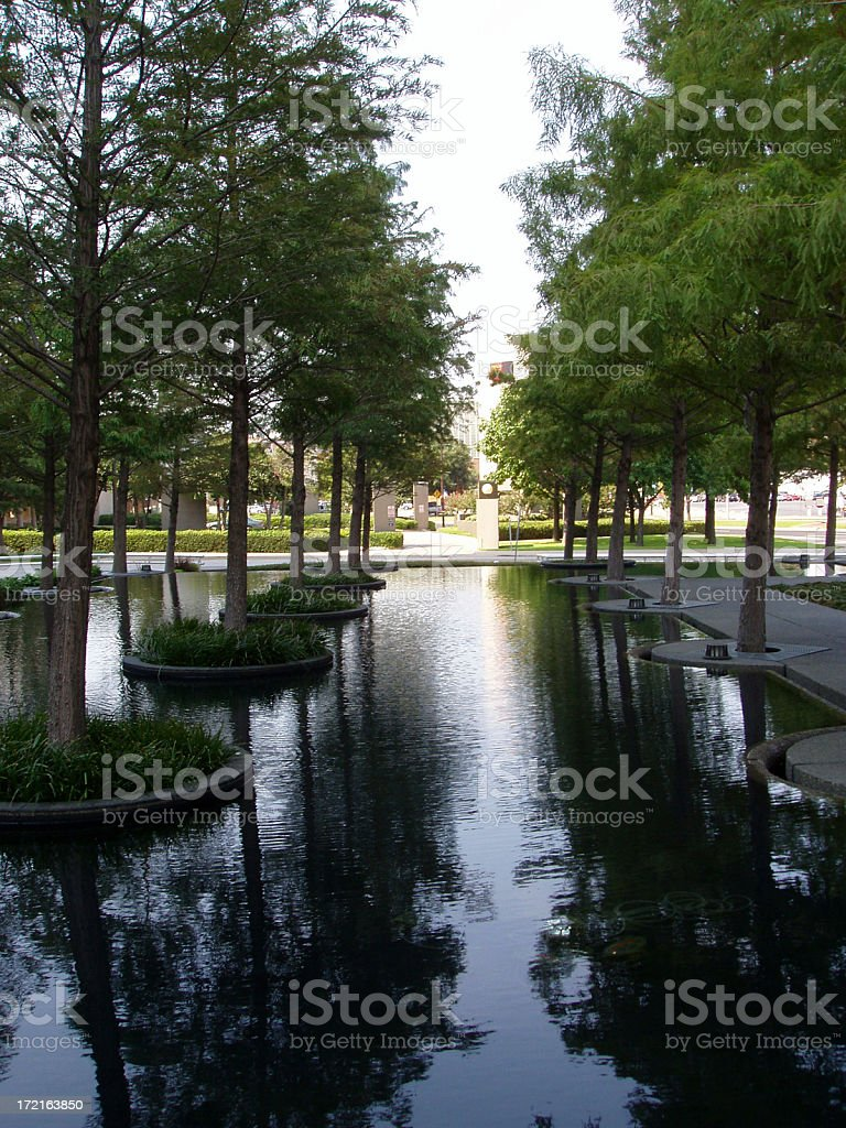 Water Reflections royalty-free stock photo