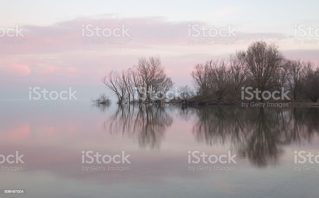 Water reflections stock photo