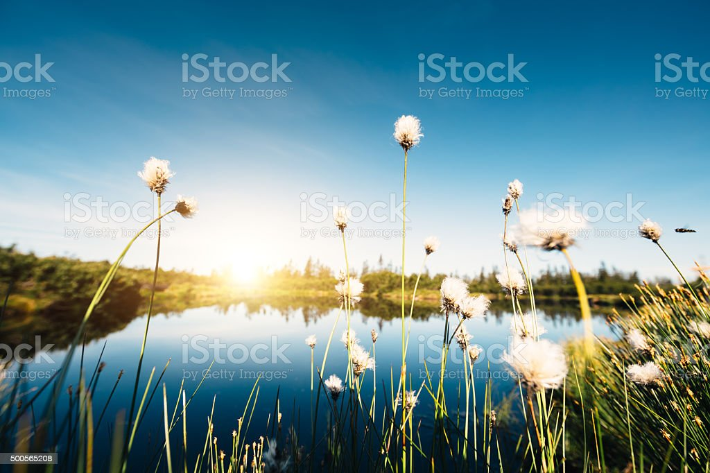 Water Reservoir In The Mountains stock photo