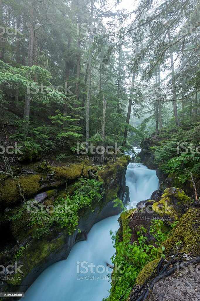Water Rushes through the Carved Stone of Avalanche Creek stock photo