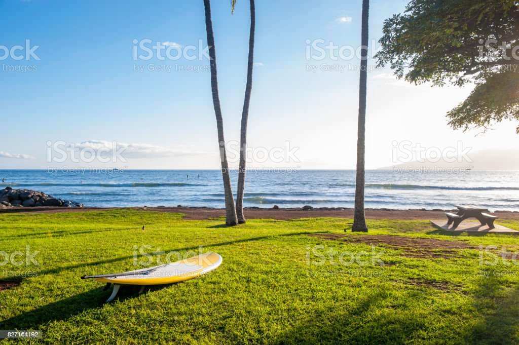 Water ski board on the beach stock photo
