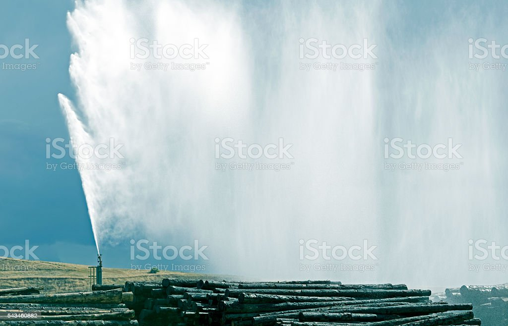 Water soaking logs at paper mill in Washington state stock photo