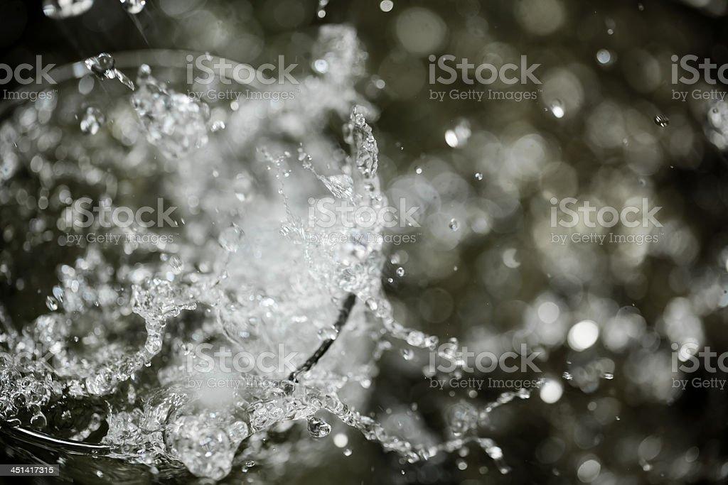 Water splashing on a glass. stock photo