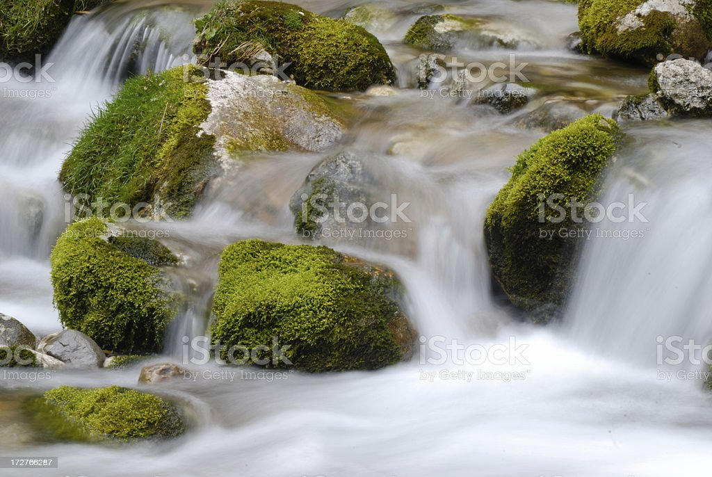 Water spring stock photo