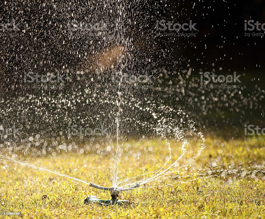 water sprinkler royalty-free stock photo