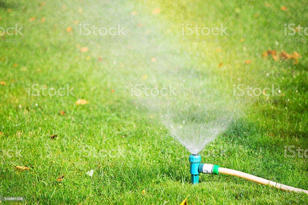 Water sprinkler spraying water on grass stock photo