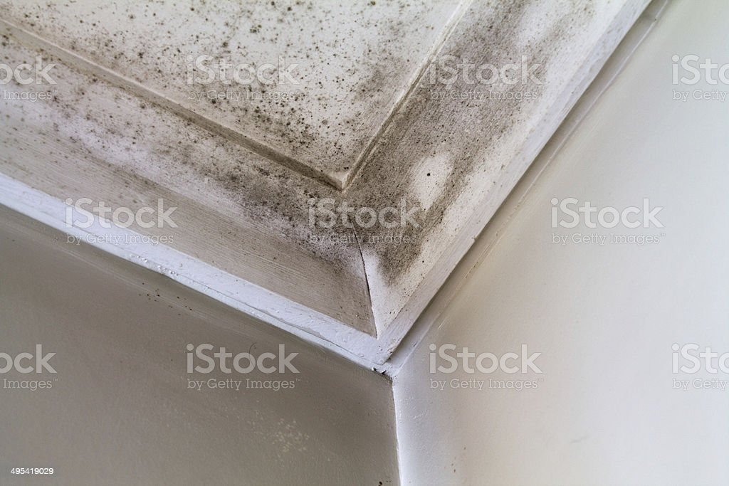 Water stains on the roof of a house. stock photo