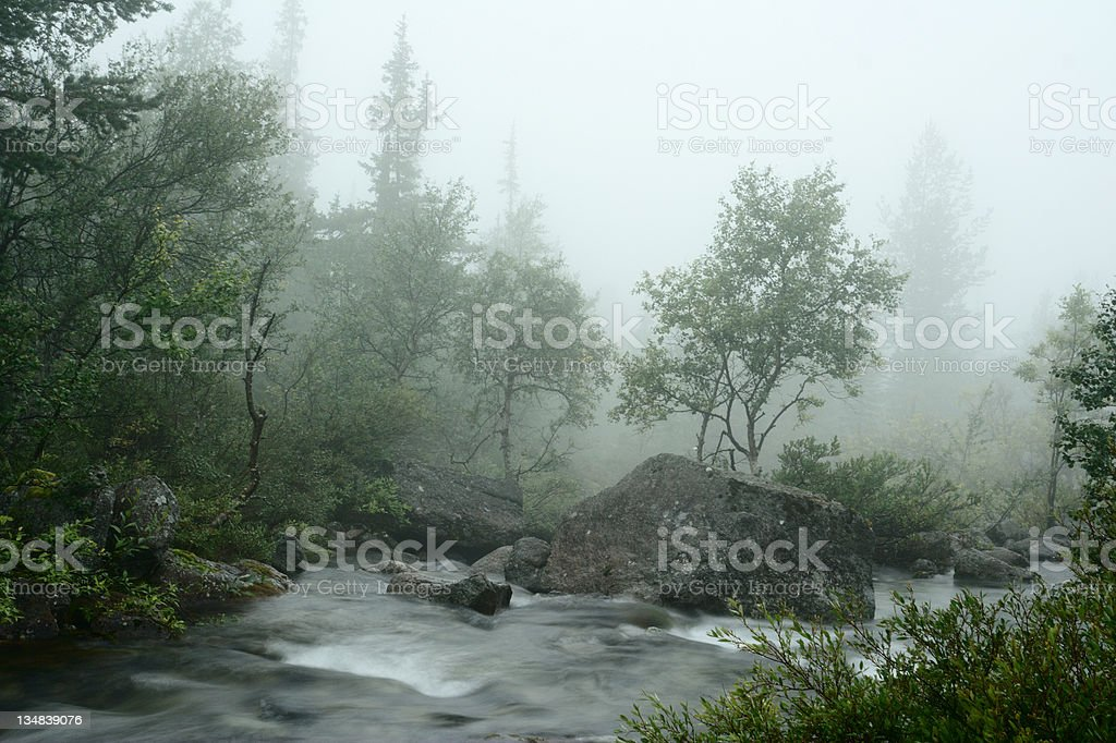 Water stream in the fog stock photo