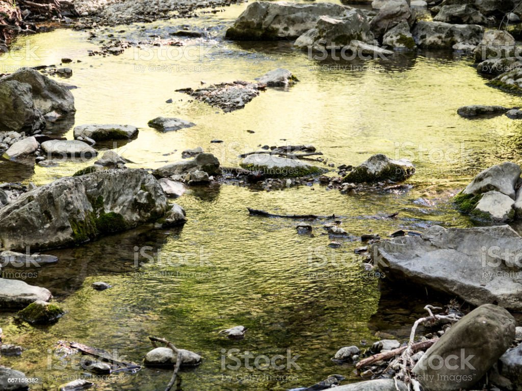 Water stream landscape view in deep beautiful  forest with stone stock photo