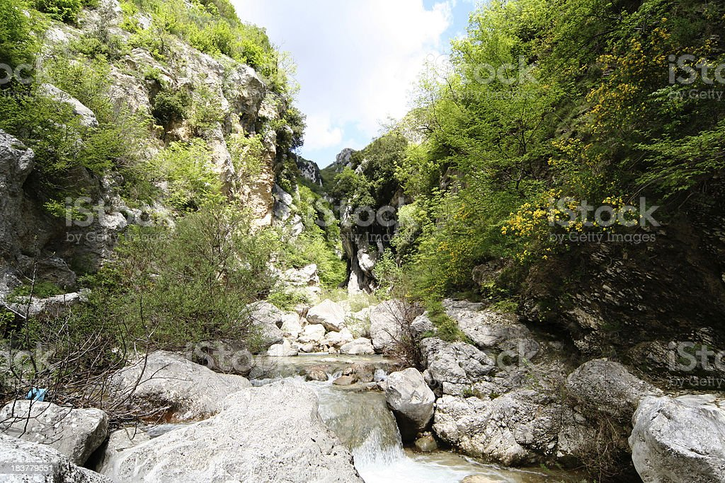 Water Stream stock photo