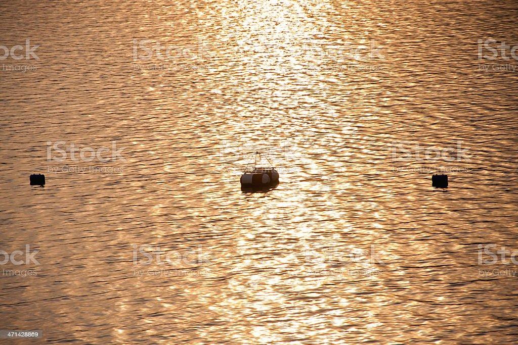 Powierzchnia wody gold zbiór zdjęć royalty-free