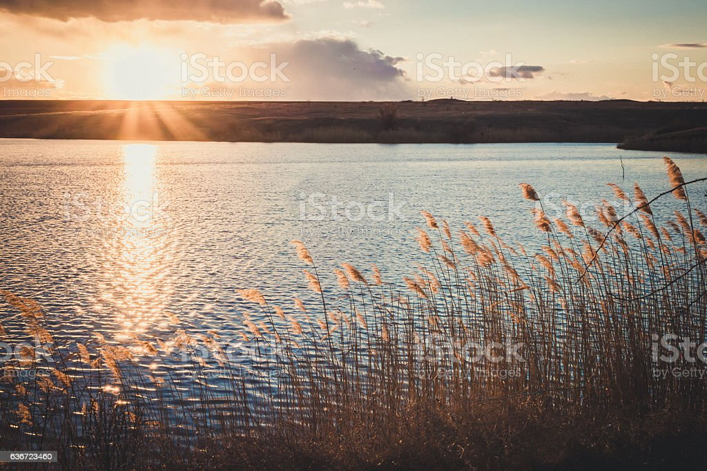 Water surface in the rays of the setting sun stock photo