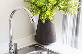 Water tap with sink