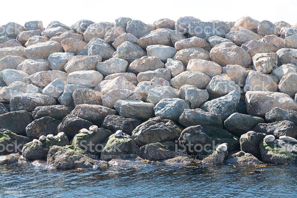 waterbreak stock photo