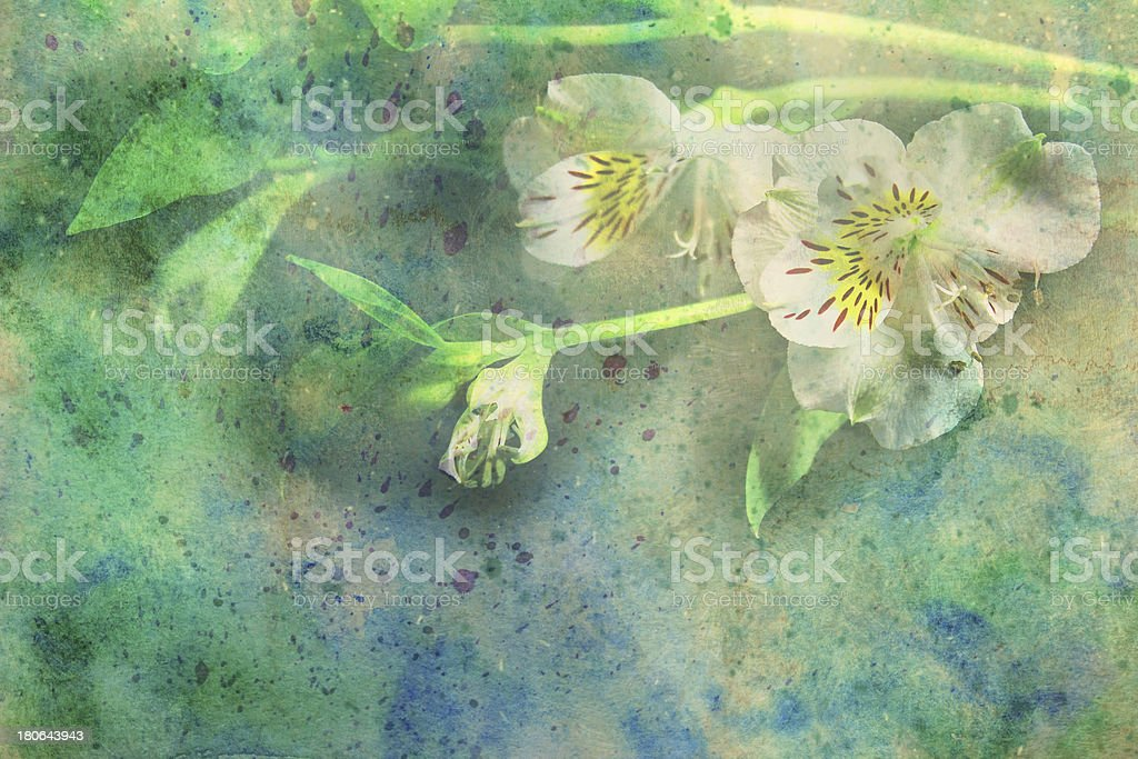 watercolor artwork with flowers royalty-free stock photo