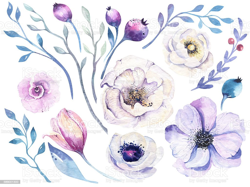 Watercolor boho flower set. Spring or summer decoration floral bohemian stock photo