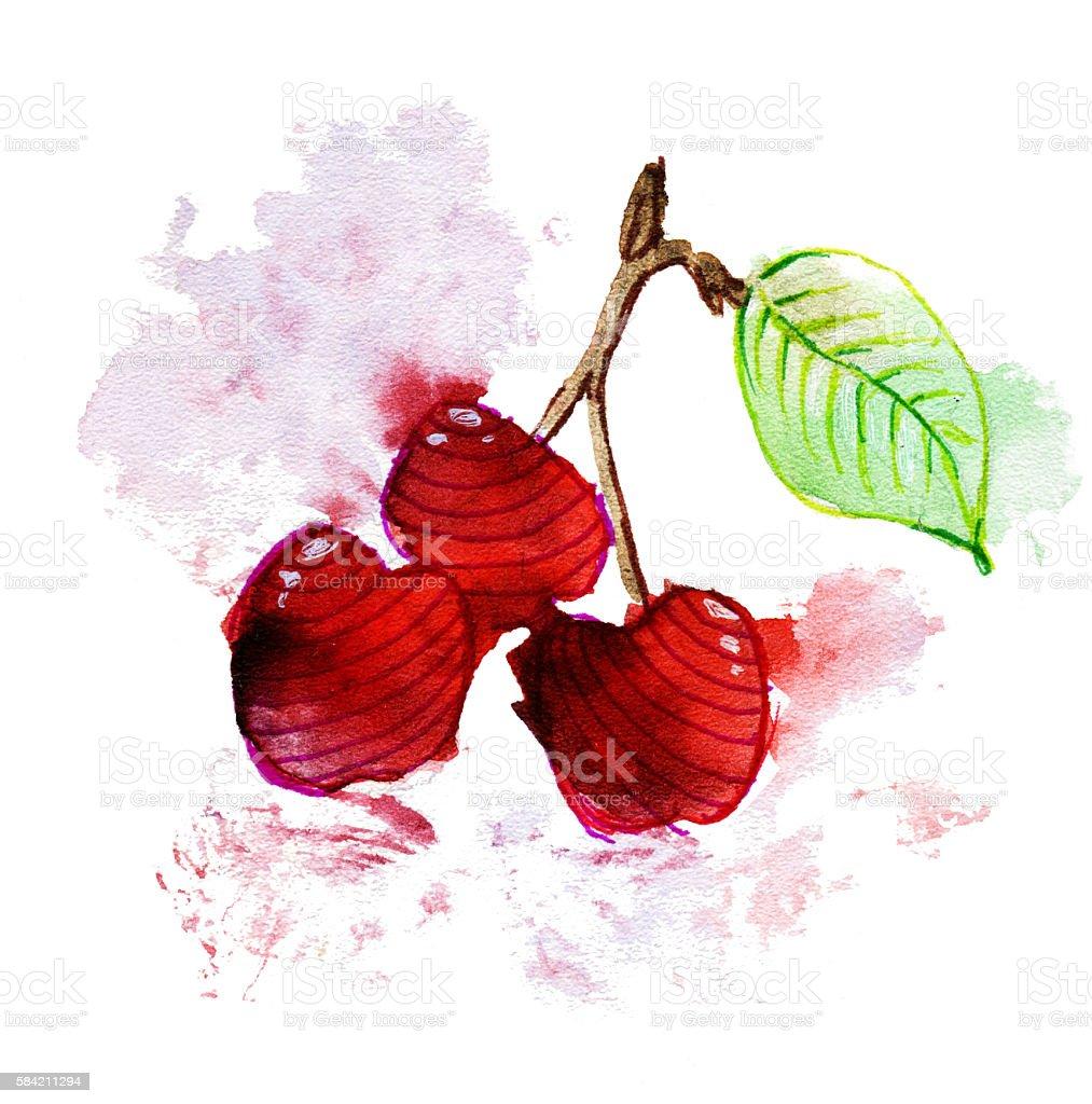 Watercolor cherry stock photo