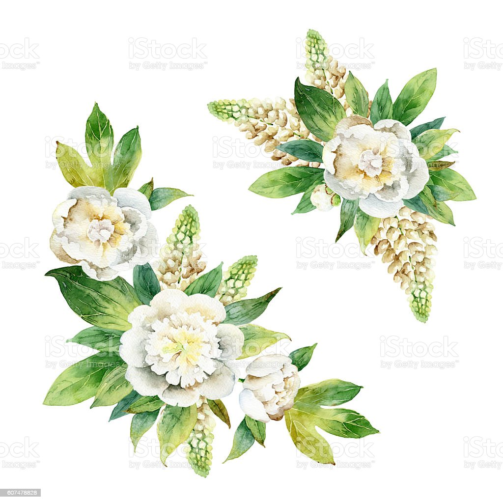 Watercolor floral composition with white peonies and lupine vector art illustration
