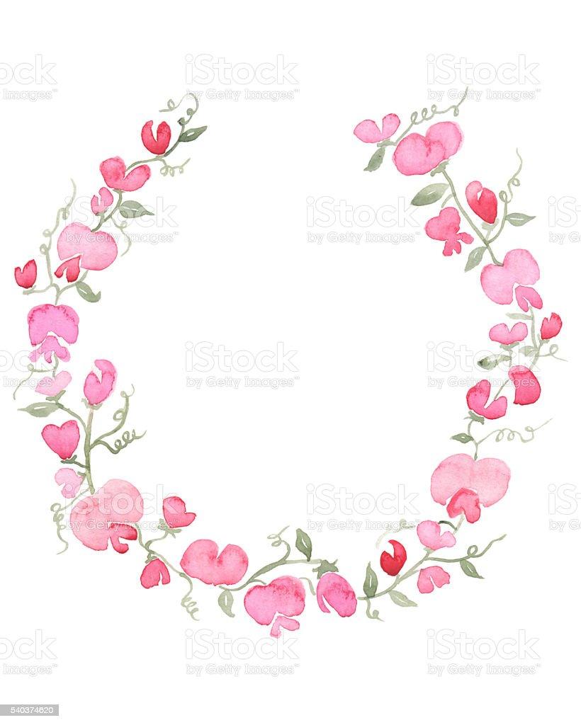 Watercolor Flower Wreath - Sweetpeas stock photo