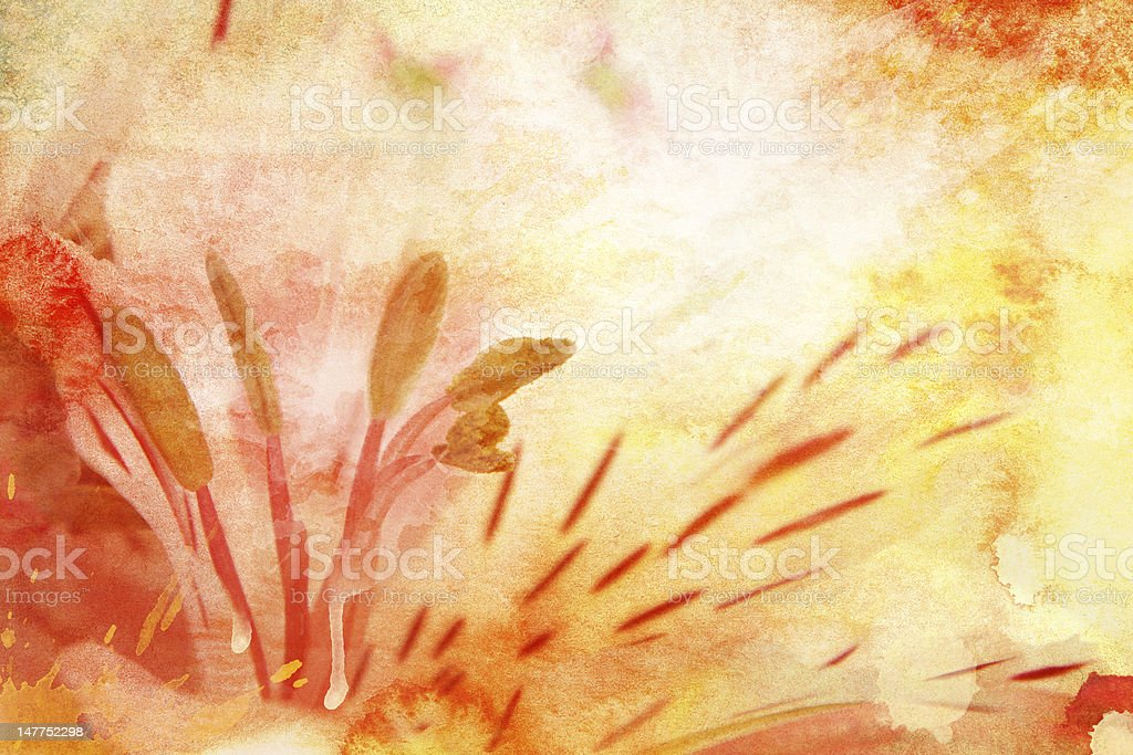 Watercolor lily royalty-free stock photo