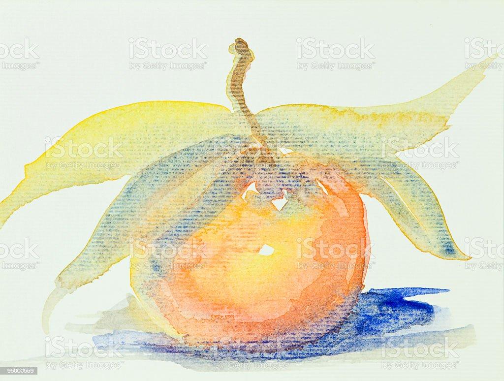 watercolor mandarin royalty-free stock photo