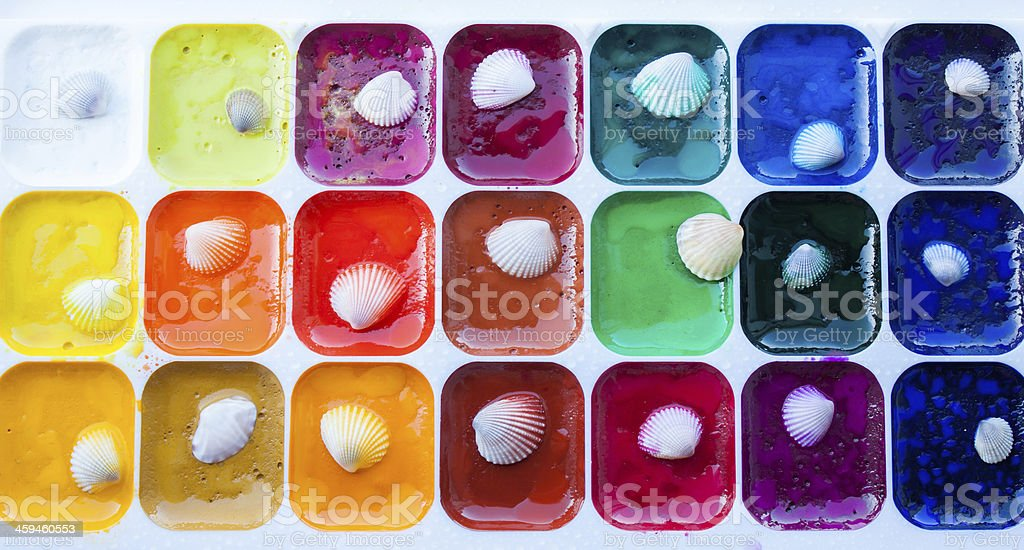 Watercolor palette with sea shells royalty-free stock photo