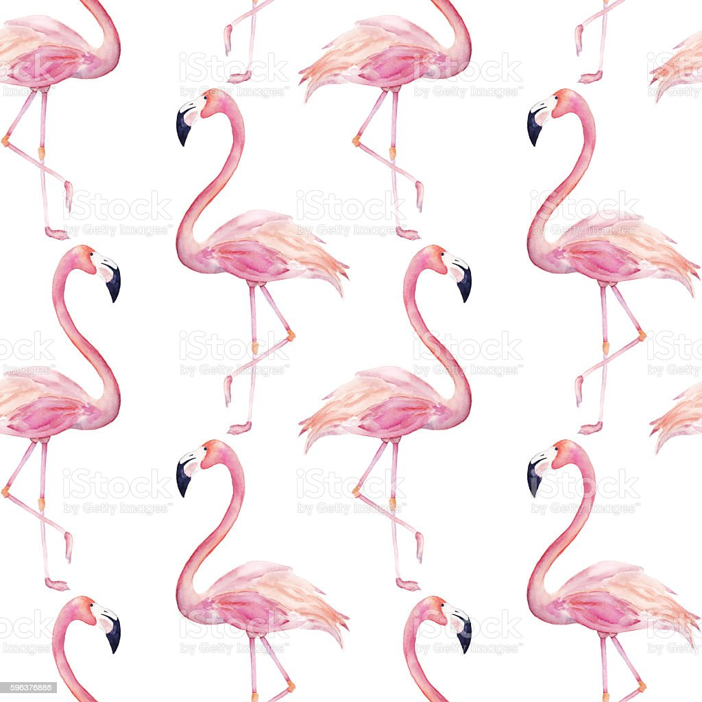 Watercolor seamless pattern with  flamingo stock photo