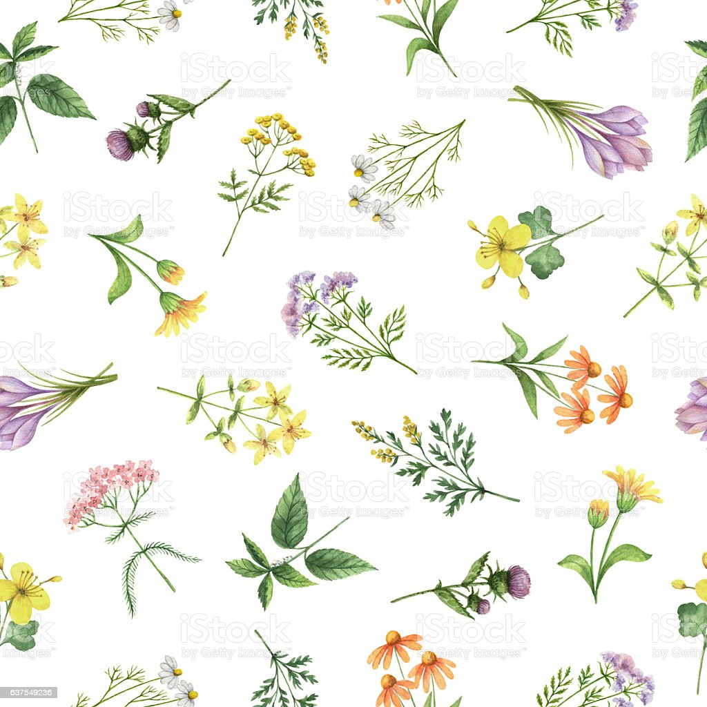 Watercolor seamless pattern with flowers and branches. stock photo