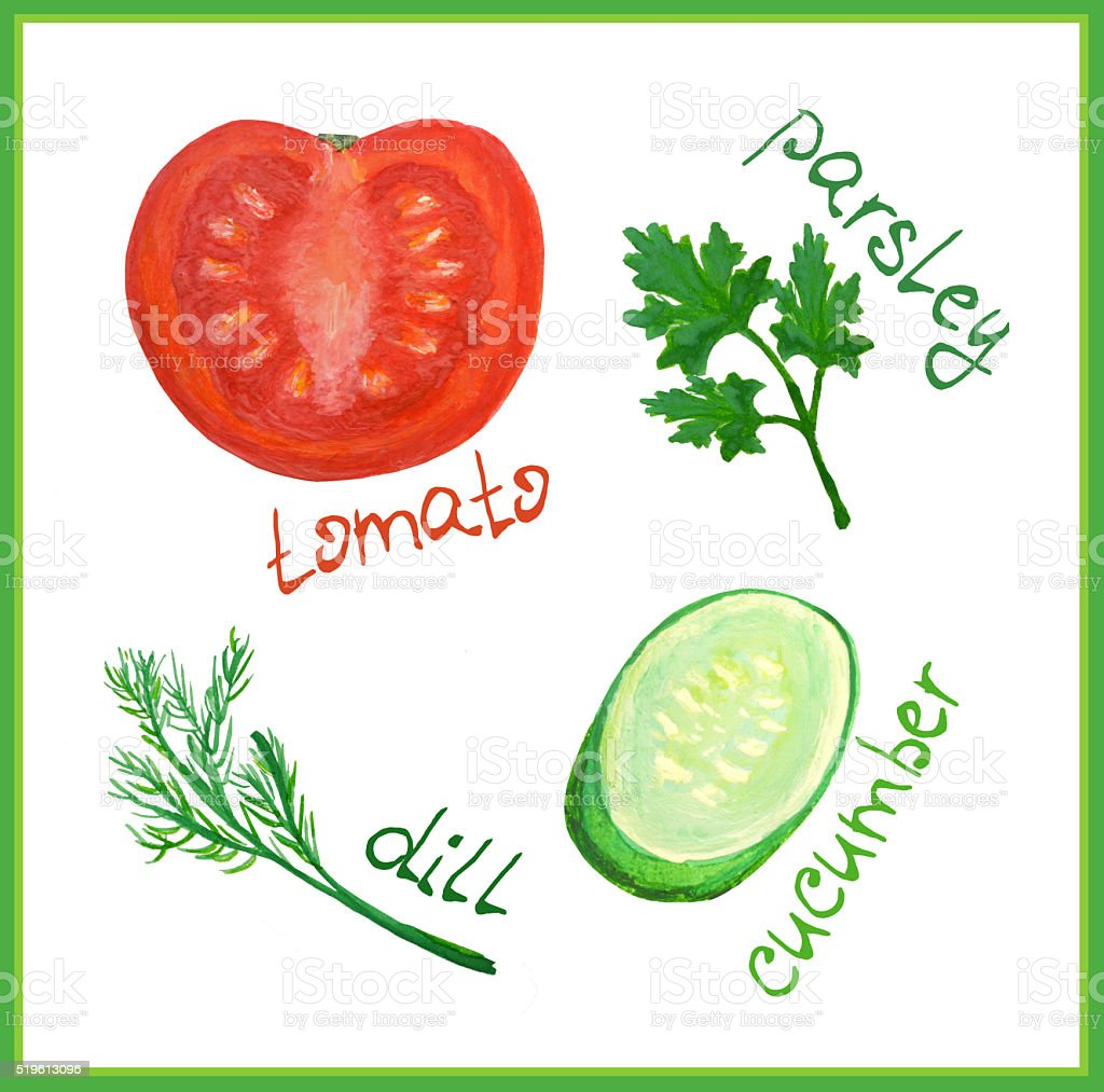 Watercolor tomato, cucumber, dill and parsley stock photo
