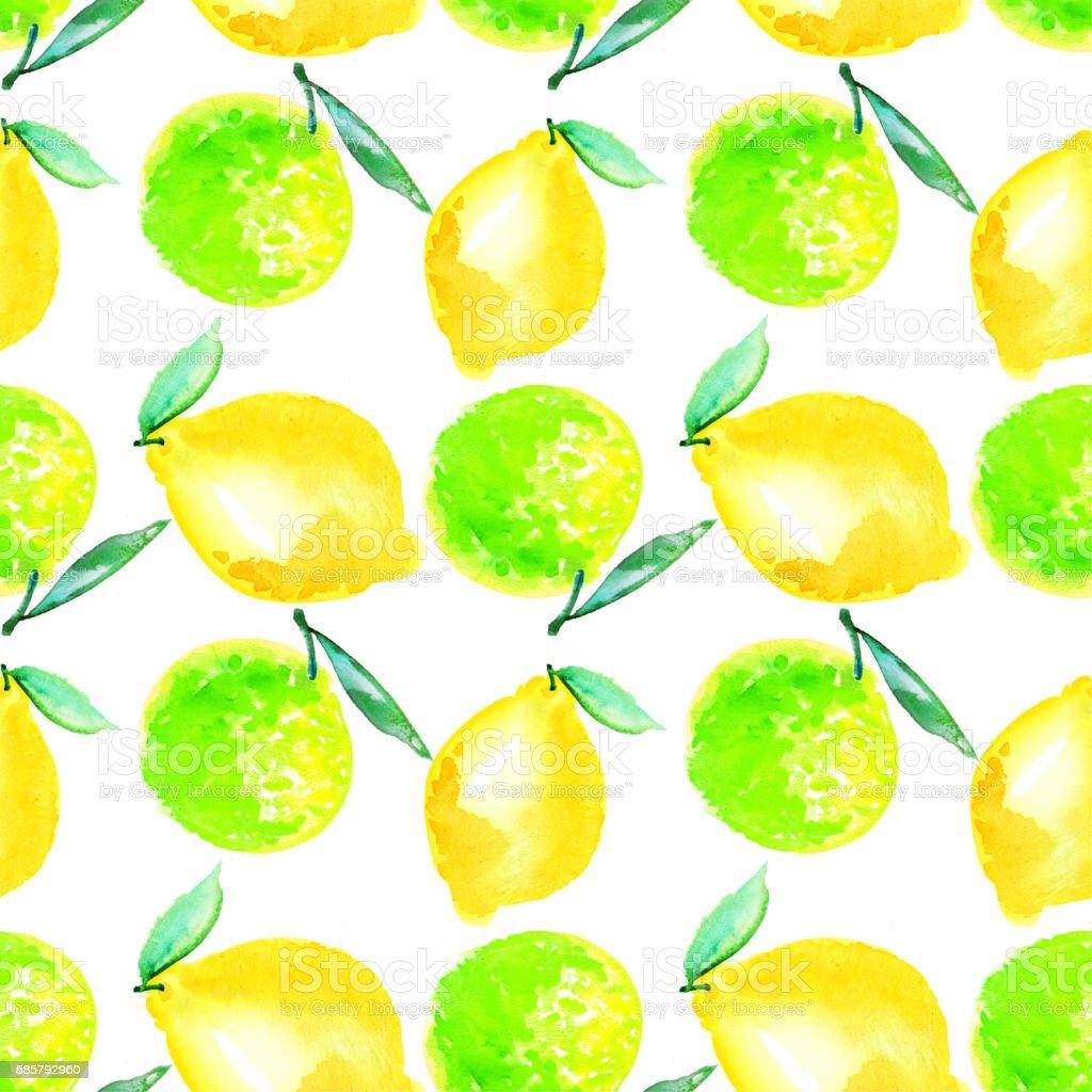 Watercolour lime and lemon fruit illustration. citrus natural ha stock photo