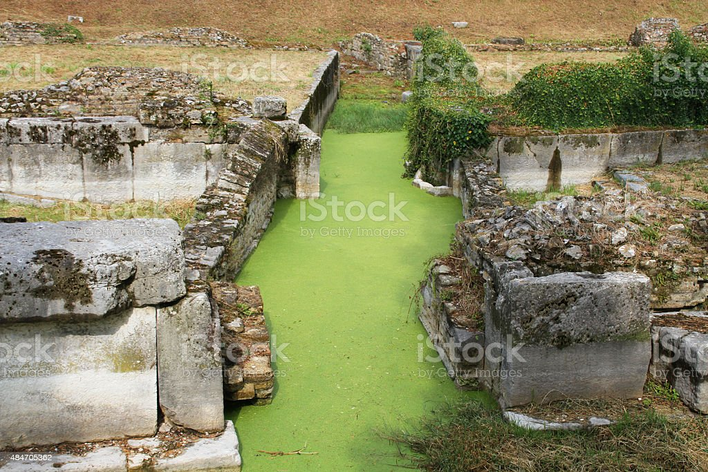 watercress in channel ruins of Aquileia Italy stock photo