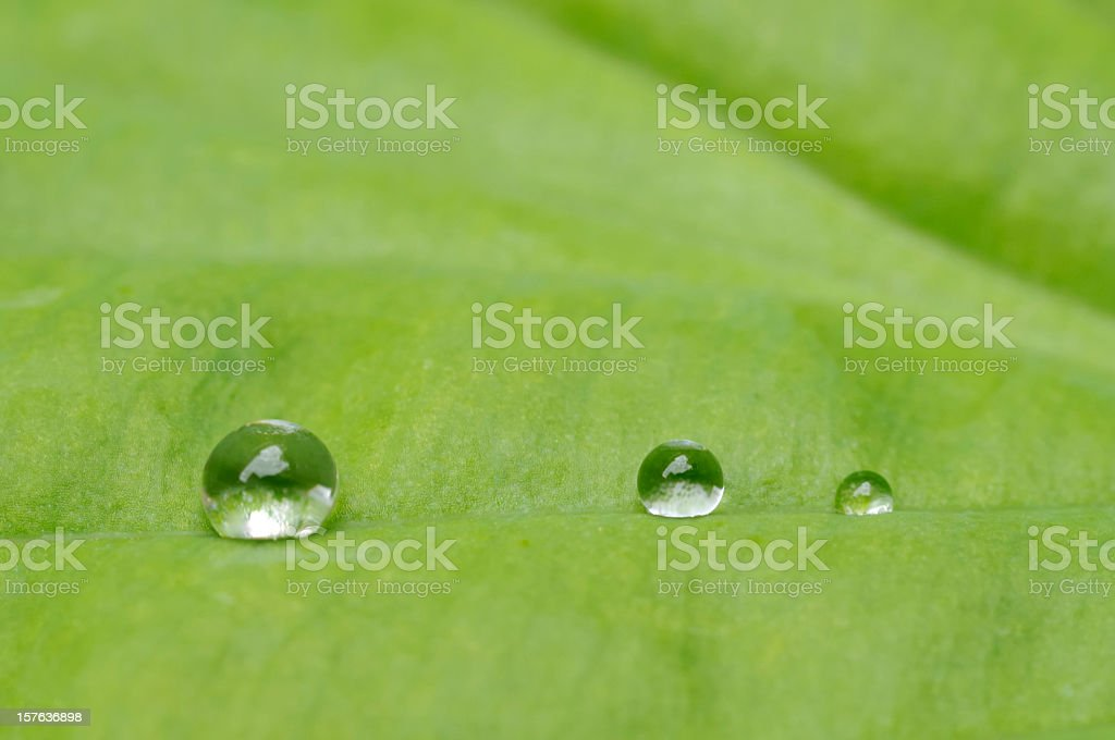Waterdrops royalty-free stock photo