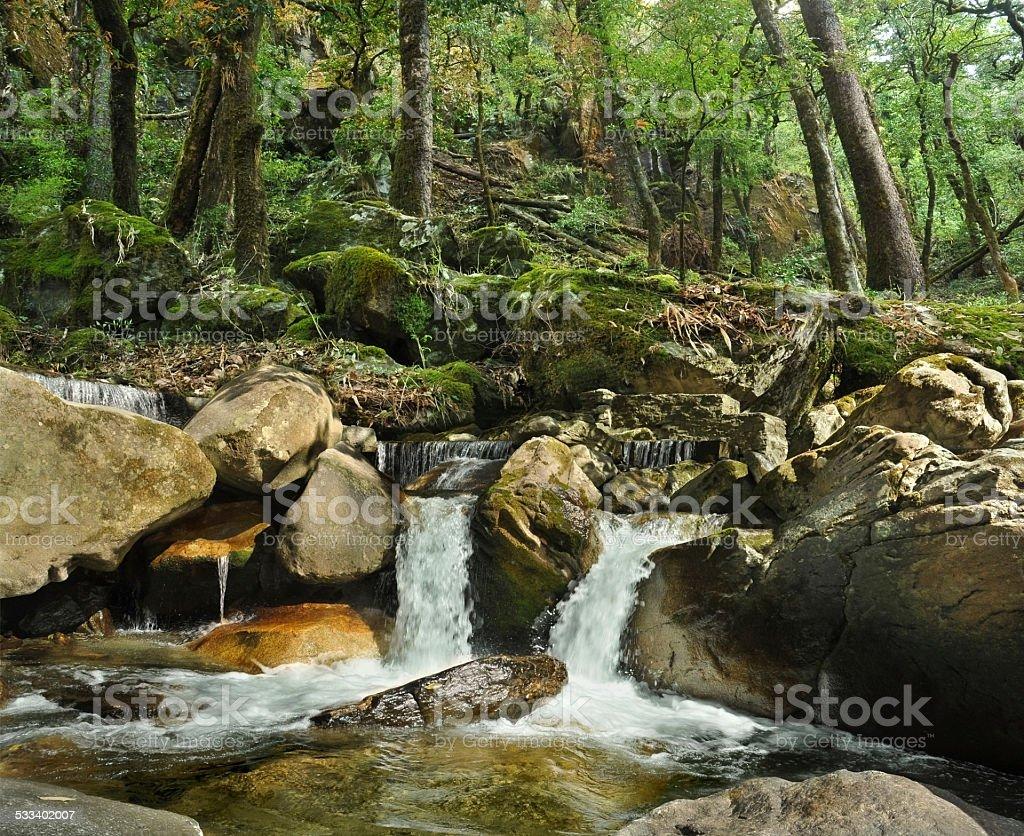 Waterfall among the rocks stock photo