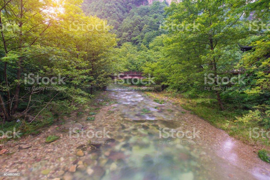 Waterfall and bridge in Golden whip stream at Zhangjiajie National Forest Park, Hunan, China stock photo