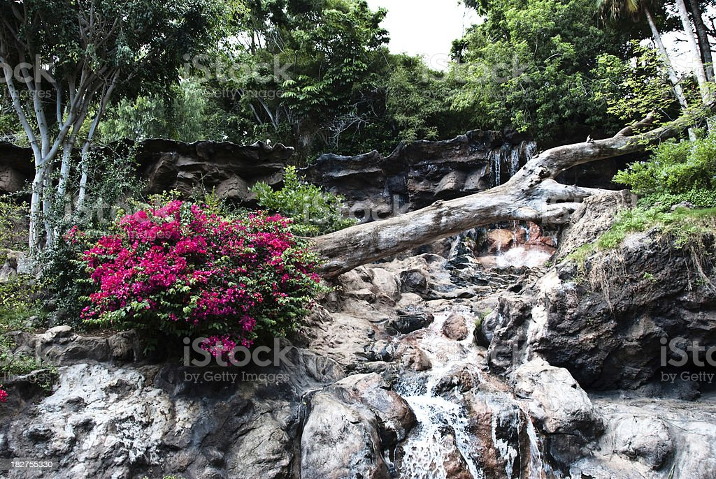 Waterfall and flowers on Tenerife, Canary Islands royalty-free stock photo