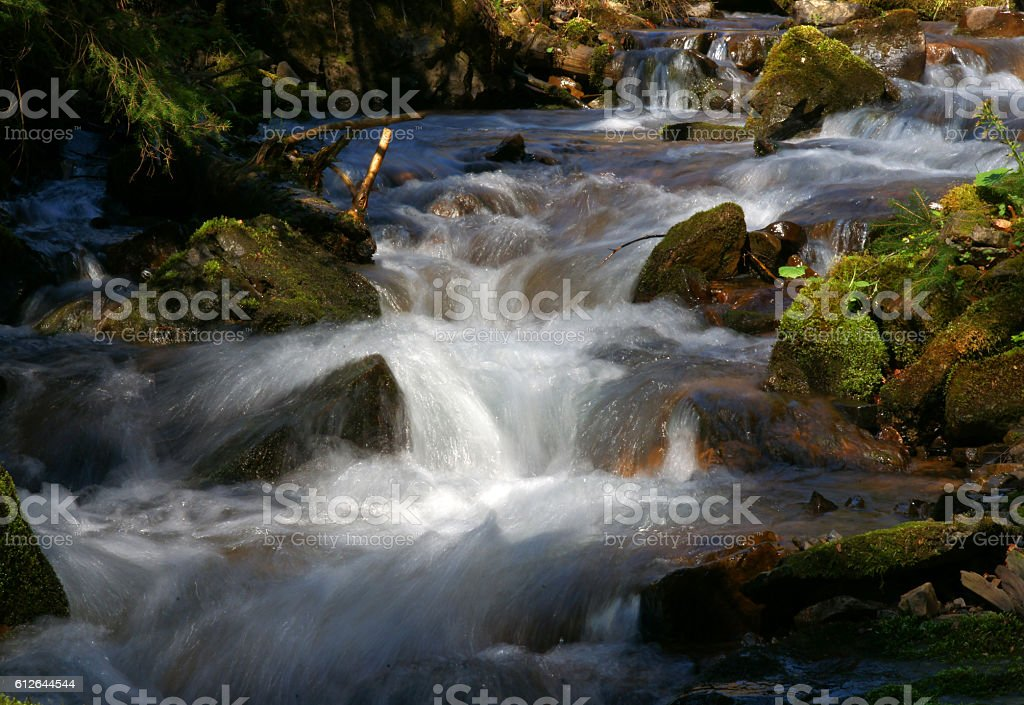 Waterfall and forest stream stock photo
