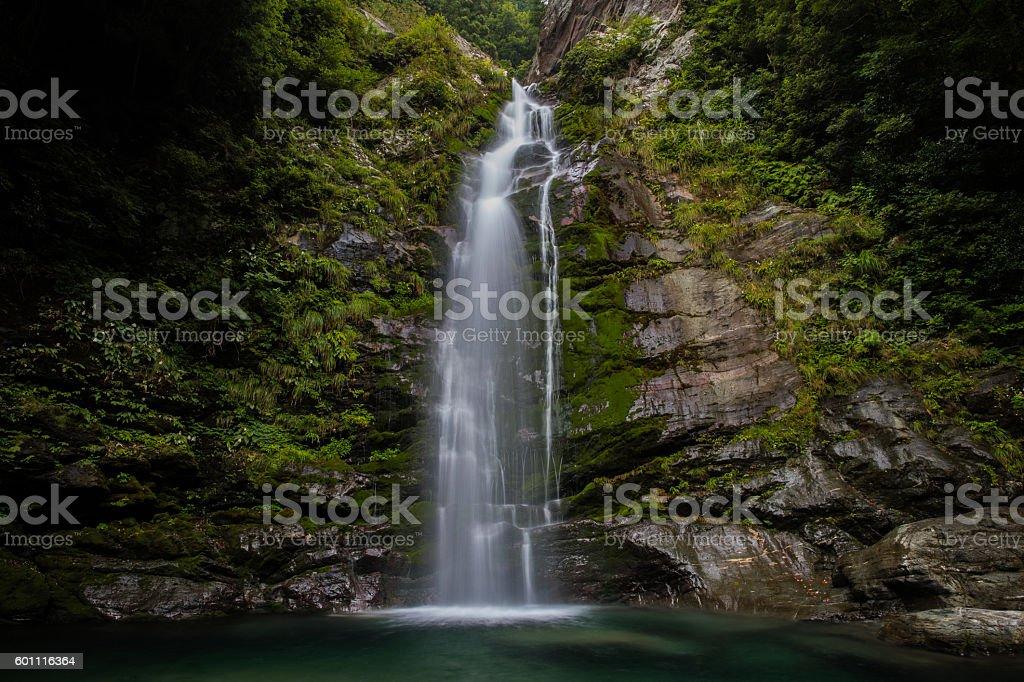 Waterfall and fresh green (Choshi no taki in Japan) stock photo