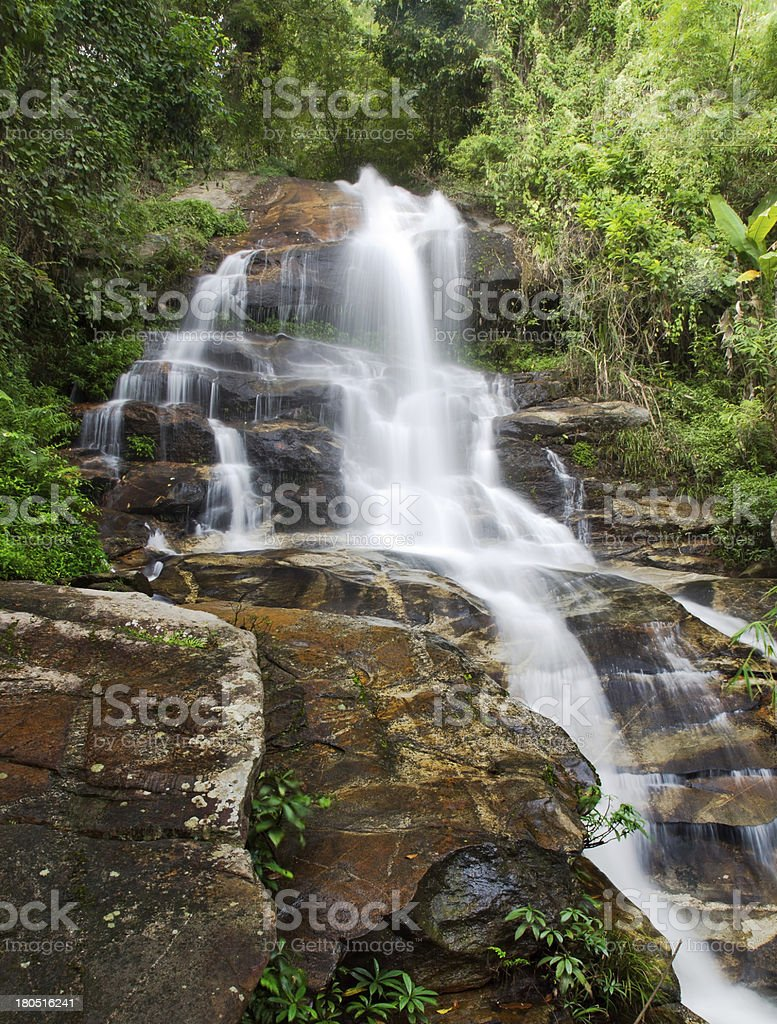 Waterfall and green leaves of a rainforest royalty-free stock photo
