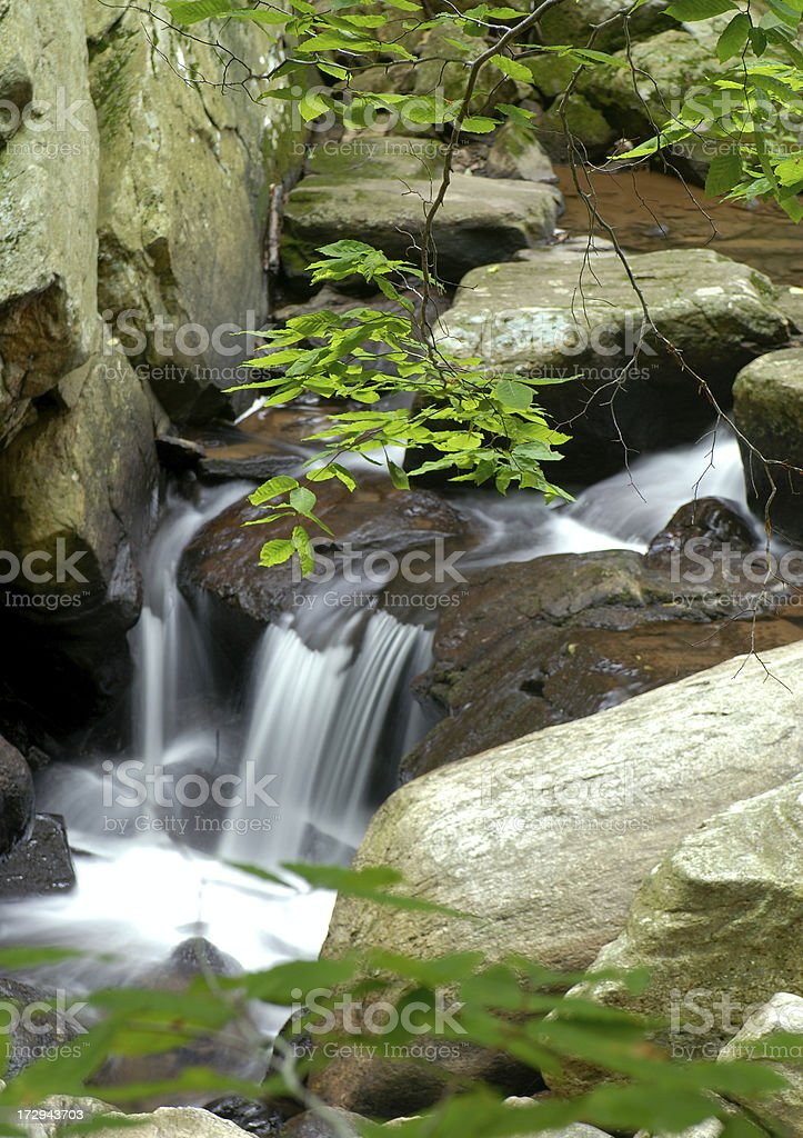 waterfall and leaves royalty-free stock photo