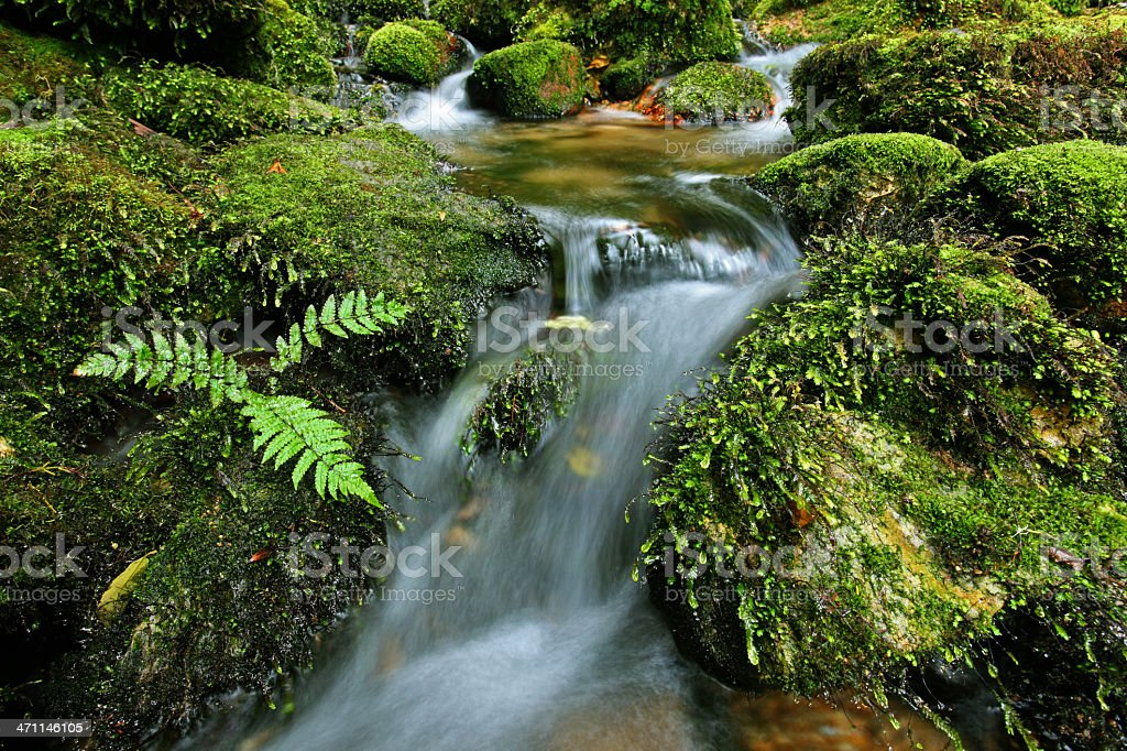 Waterfall and mossy rocks, New Zealand (XXXL) royalty-free stock photo