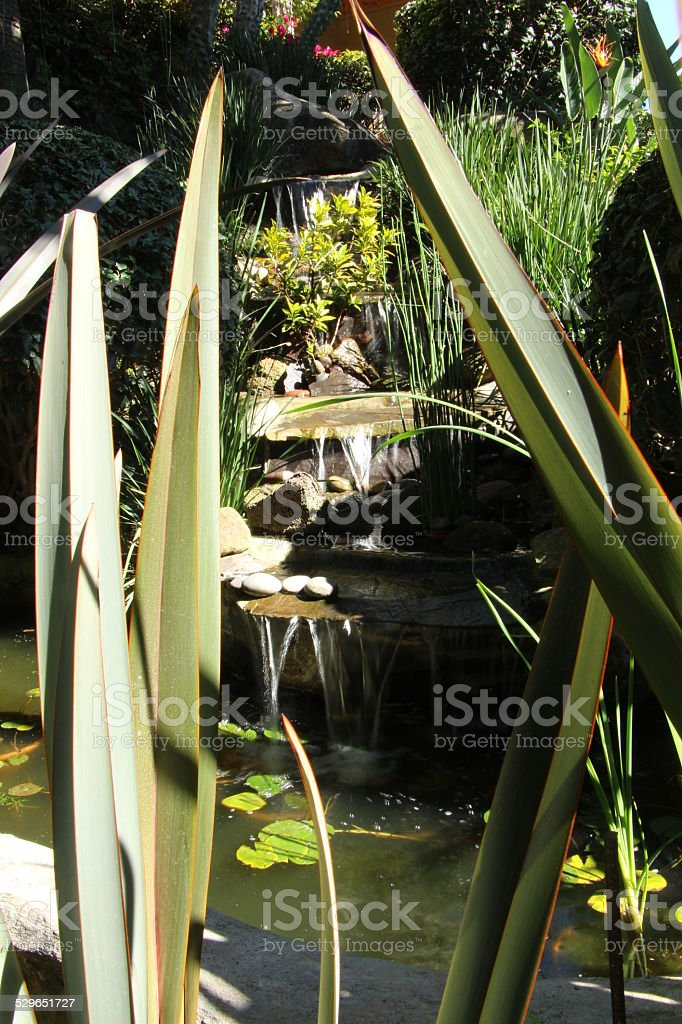 Waterfall and Pond stock photo