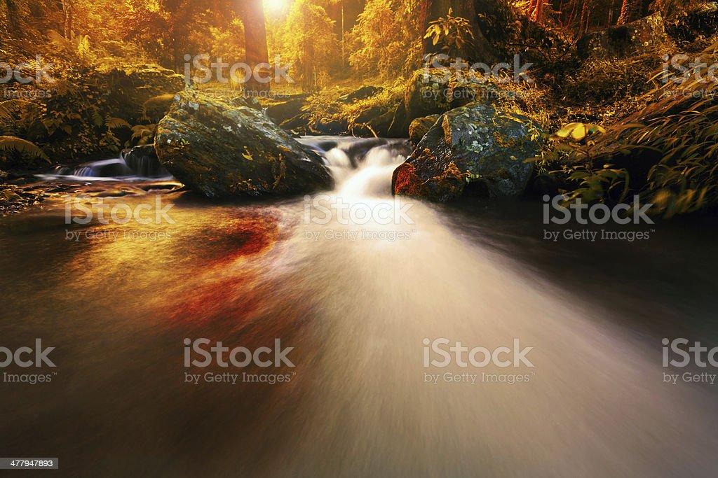 Wasserfall und rock Lizenzfreies stock-foto