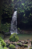 Waterfall at Emerald Pool on Dominica
