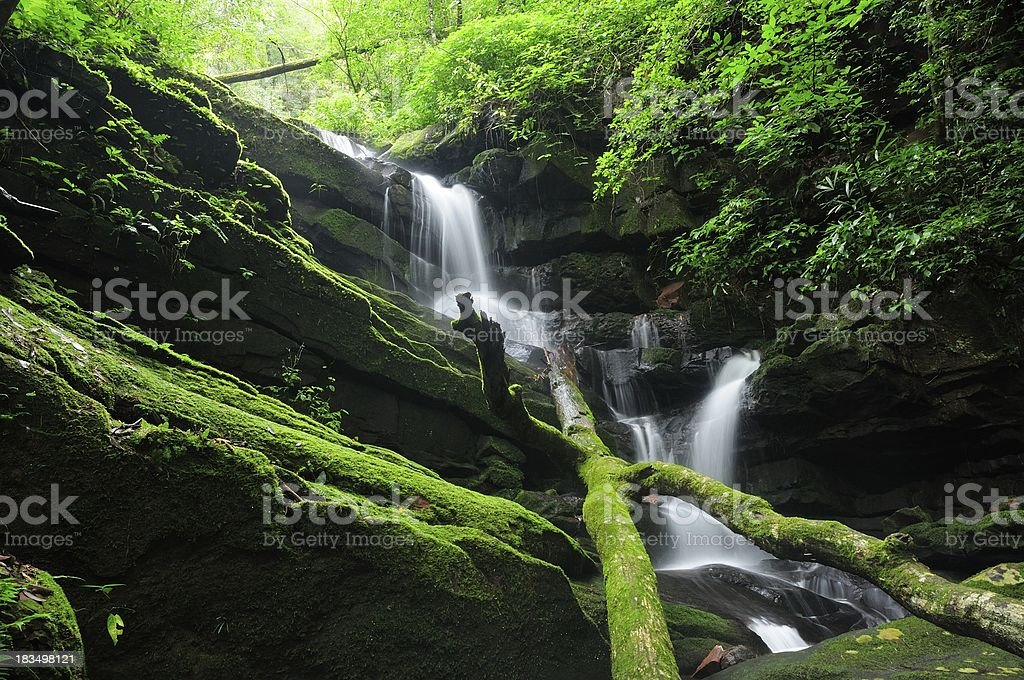 Waterfall at the rain forest royalty-free stock photo