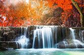 Waterfall autumn deep forest scenic natural sunlight