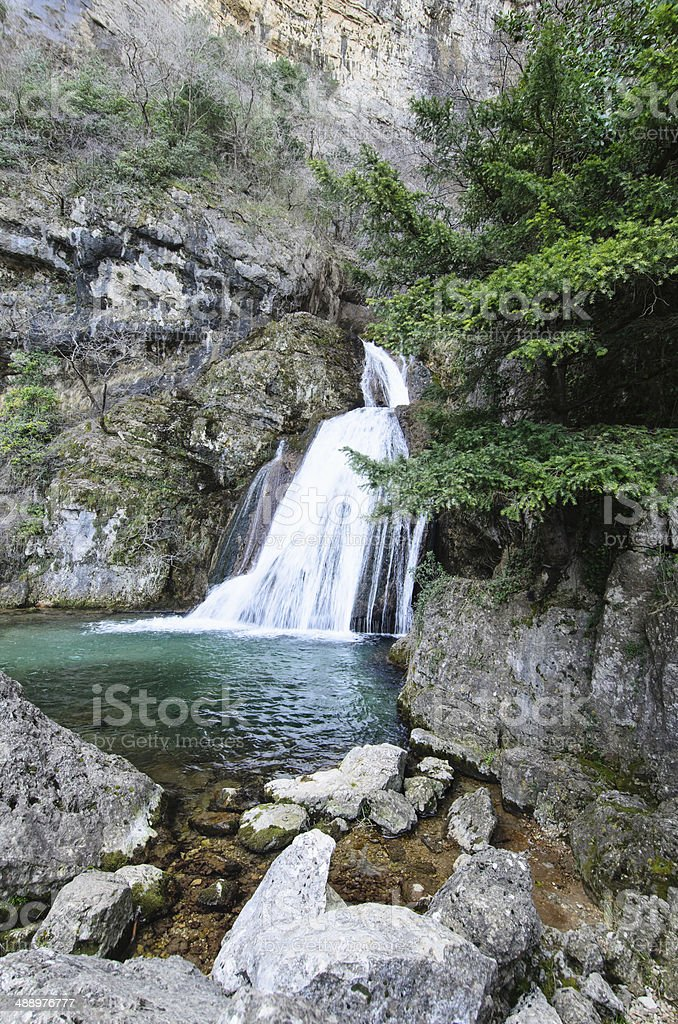Waterfall behind the tree royalty-free stock photo